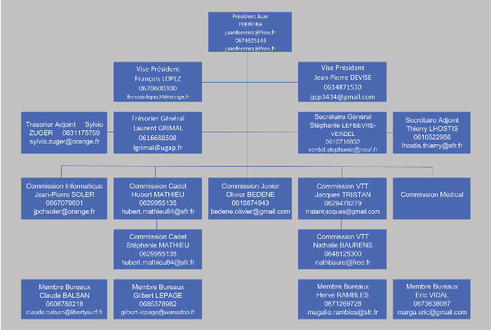 organi comité 2